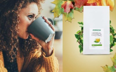 Can The Herbal Weight Loss Tea Help You Lose Weight?